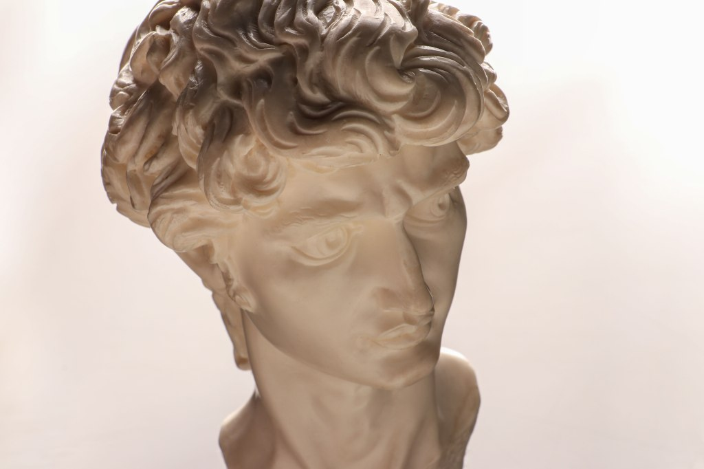 A replication of the marble bust or head of Michelangelo's David sculpture on a white background.